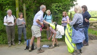 U3A Walking Group
