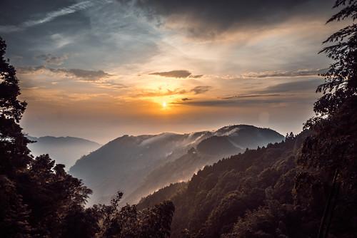 """lake tree forest canon landscape sony taiwan 南投 台灣 wangyou 忘憂森林 ef1740mmf4lusm forest"""" sonya7r"""