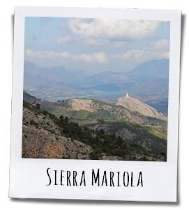 De Sierras Mariola en Font Roja herbergen grote aantallen geneeskrachtige kruiden en aromatische planten