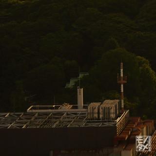 11.遠景_周辺部Z_49mmF80