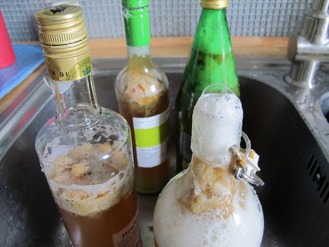 Lively Second Ferment Kombucha