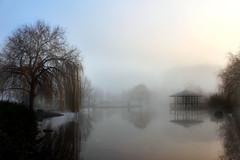 Lago en la niebla