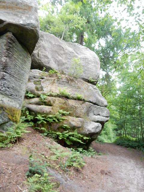 Monkey-faced rock