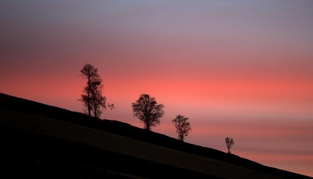 Libanus Dawn