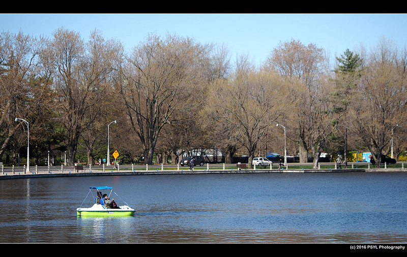Paddle-boating on Dow's Lake