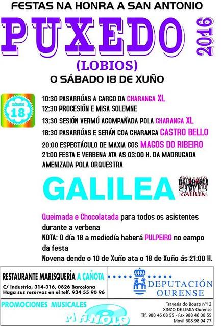 Lobios 2016 - Festas de Santo Antón en Puxedo - cartel