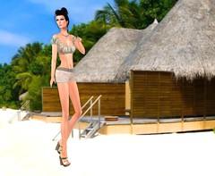 Mimikri - Naomi Organza Crop Top jungle & Leather Shorts beige