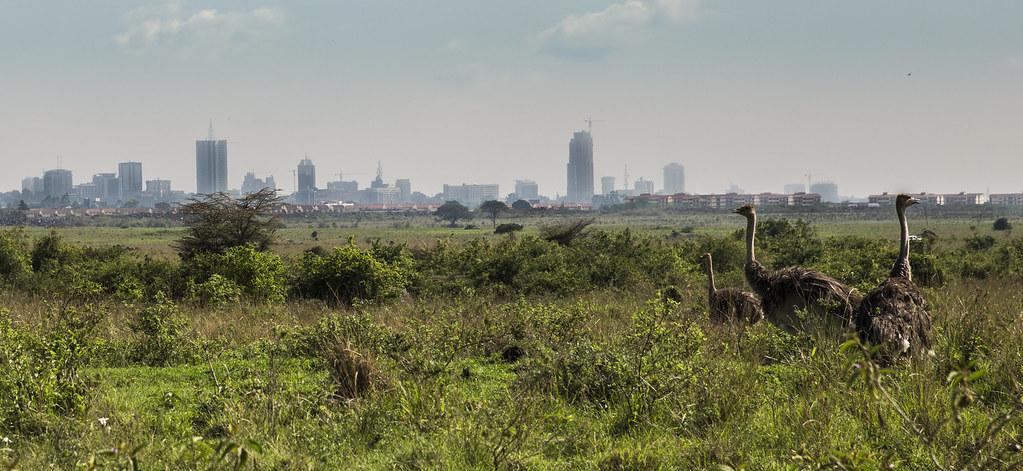 Y1A1029 Nairobi