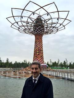 Cattaneo albero della vita. Inaugurazione Expo 2015