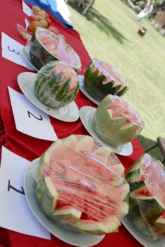 Watermelon display by LIVES-Ethiopia project for ranking
