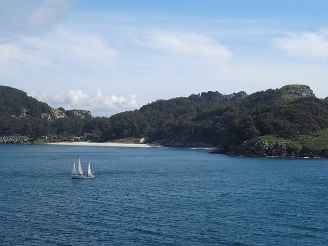cies sailing_1