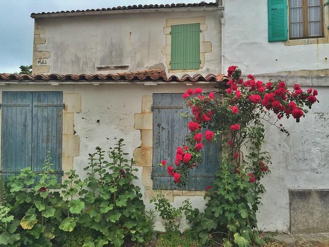 Fachada florida de Isla de Ré (Oeste de Francia)