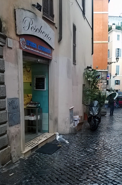 Rome Pescheria