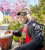 Web bongo player