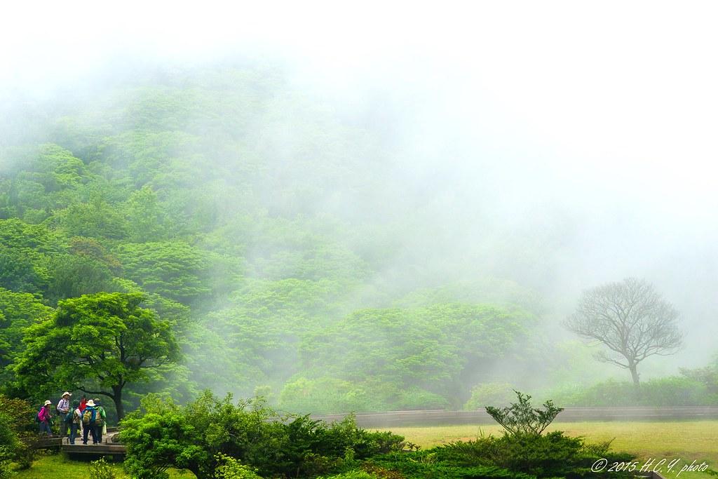 The Mist 大霧 大屯自然公園 陽明山