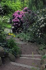 Alter Botanischer Garten (10)