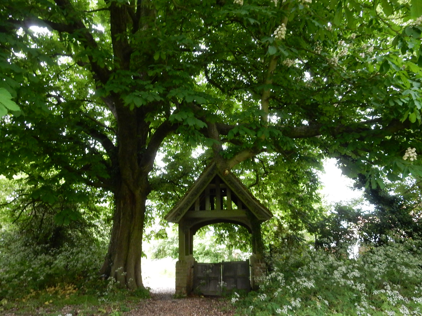 Great Henny lychgate Bures to Sudbury