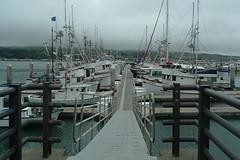 Bodega Bay - Dock