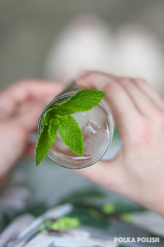 Rhubarb Mojito with fresh mint