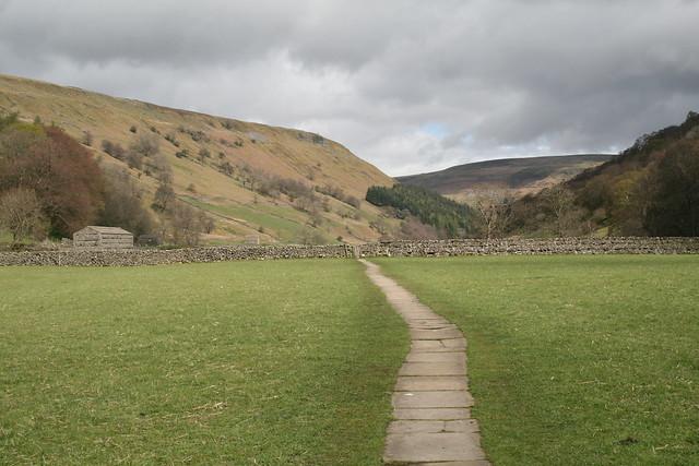 Meadows at Muker