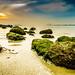 Punggol Beach by allanaespolong