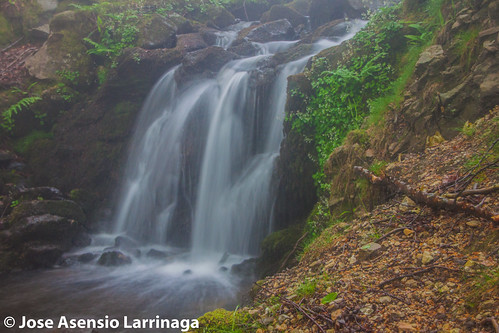 Parque Natural de Gorbeia 2015 #DePaseoConLarri #Flickr -054