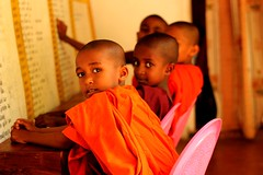 child, people, temple, monk, person, sitting,