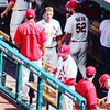 Cardinals dugout #baseball
