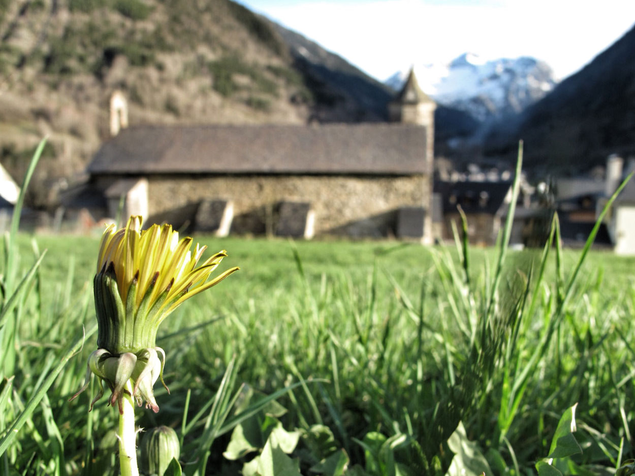 Iglesia de Sant Joan d'Arties (Val d'Aran)_museo