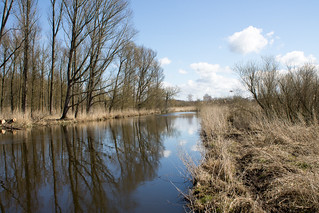 Trave am Brennermoor