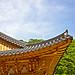 Korean Style Rooftop(한국양식의 지붕)