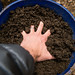 Small photo of Become Good Soil