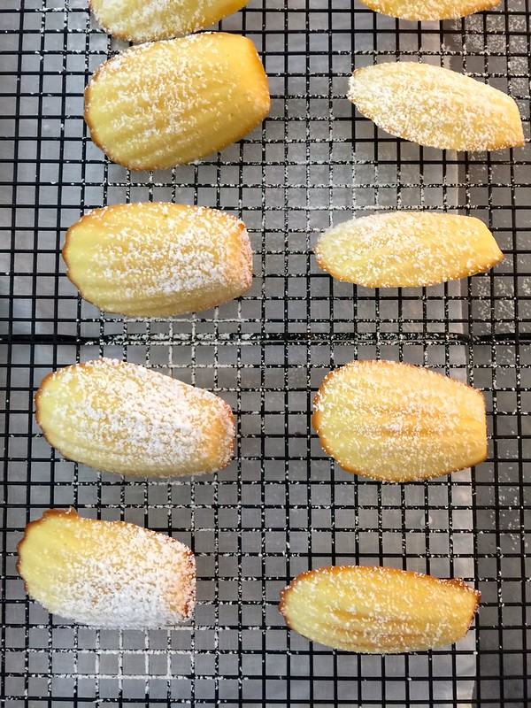 Lemon Madeleines + Homemade Gifts