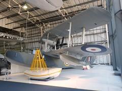 RAF Seagull