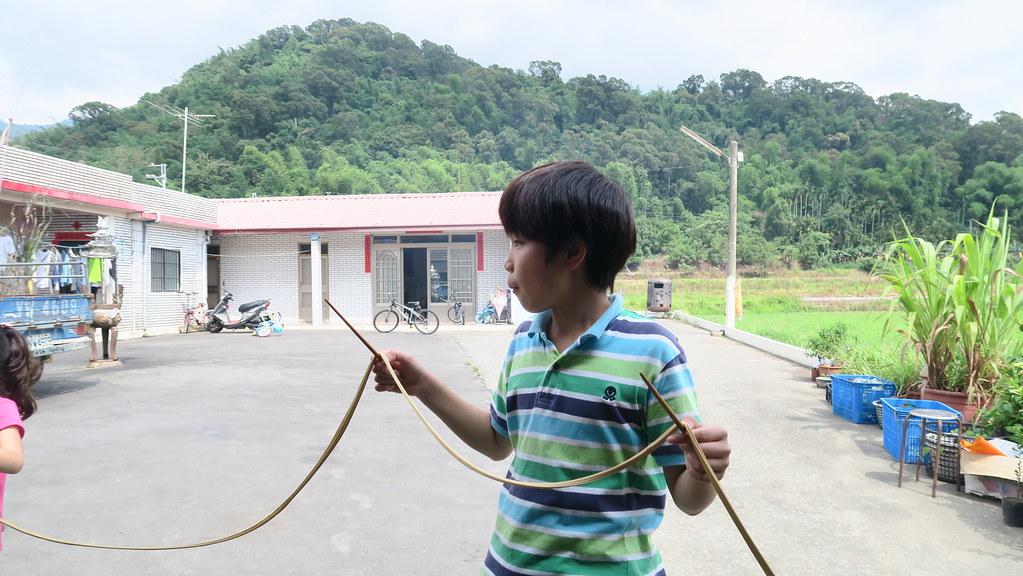 高雄甲仙山豬認證黑糖 (75)