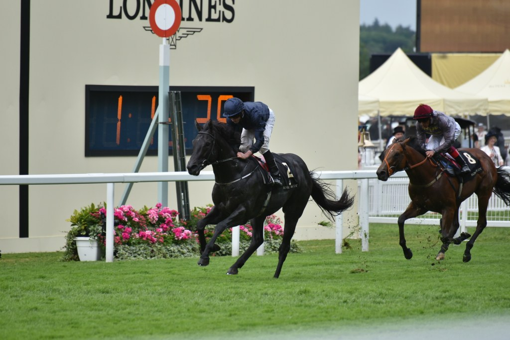 Caravaggio (USA) provided trainer Aidan O'Brien with a record eighth win in the Coventry Stakes under Ryan Moore