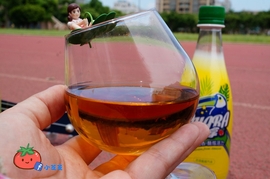 巴西汽水 Guara酷拿