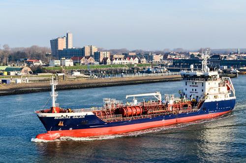 Ship in Hoek van Holland, Rotterdam
