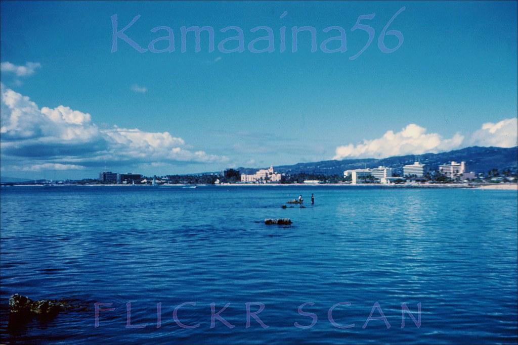 Kamaaina56 S Most Recent Flickr Photos Picssr