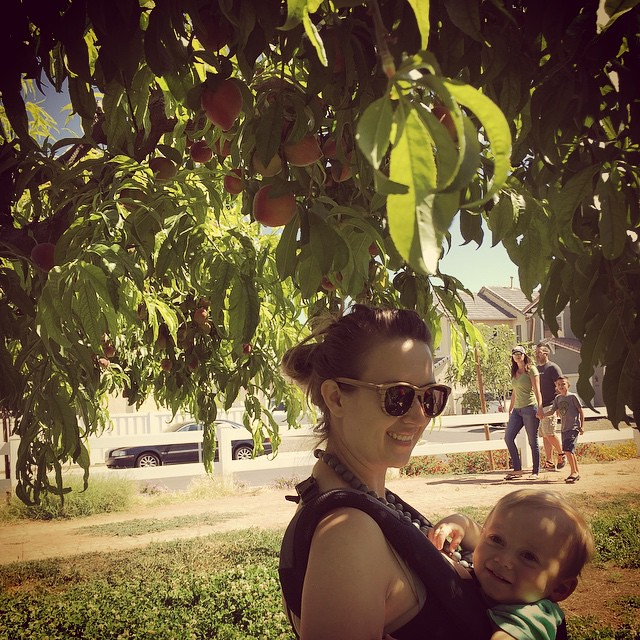 Let's pick some peaches! by bartlewife