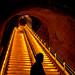 Veuve Clicquot Cellar by Tom Hilton