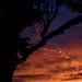 Fuji X-T1 Vivid Sunset by mart3ll