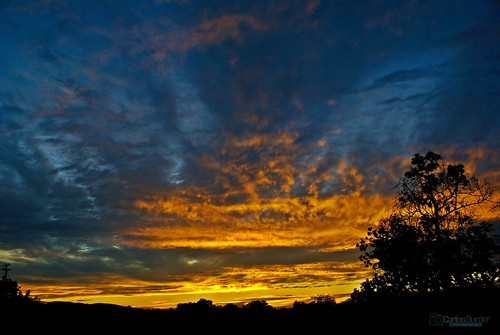 sunset naturaleza nature atardecer mao hd silueta amina rd anochecer republicadominicana valverde carlosduran haltadefinicion