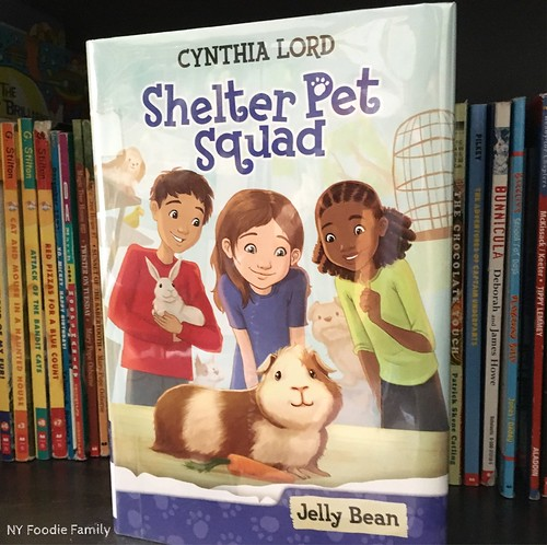Book Series Recommendations for Young Readers