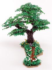 Axe Tree Tutorial (48 of 48)