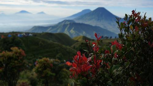 mountain indonesia landscape hiking sony gunung prau cantigi pendaki sindoro sumbing nex5t