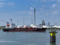 Oil/chemical tanker Stolt Egret - Calandkanaal - Port of Rotterdam