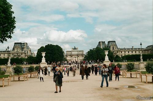 Сад Тюильри. Jardin des Tuileries. Paris. France