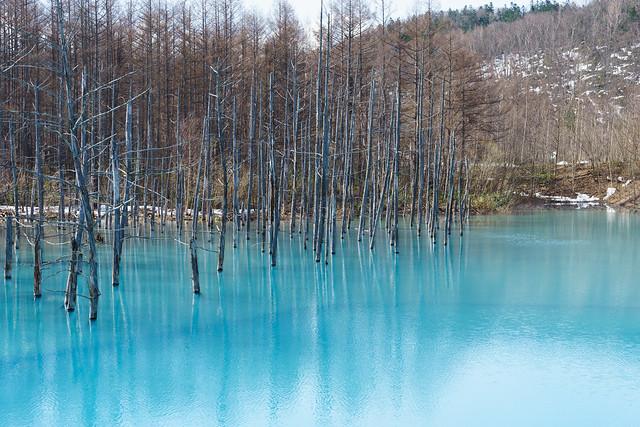 青い池(α7Ⅱ)