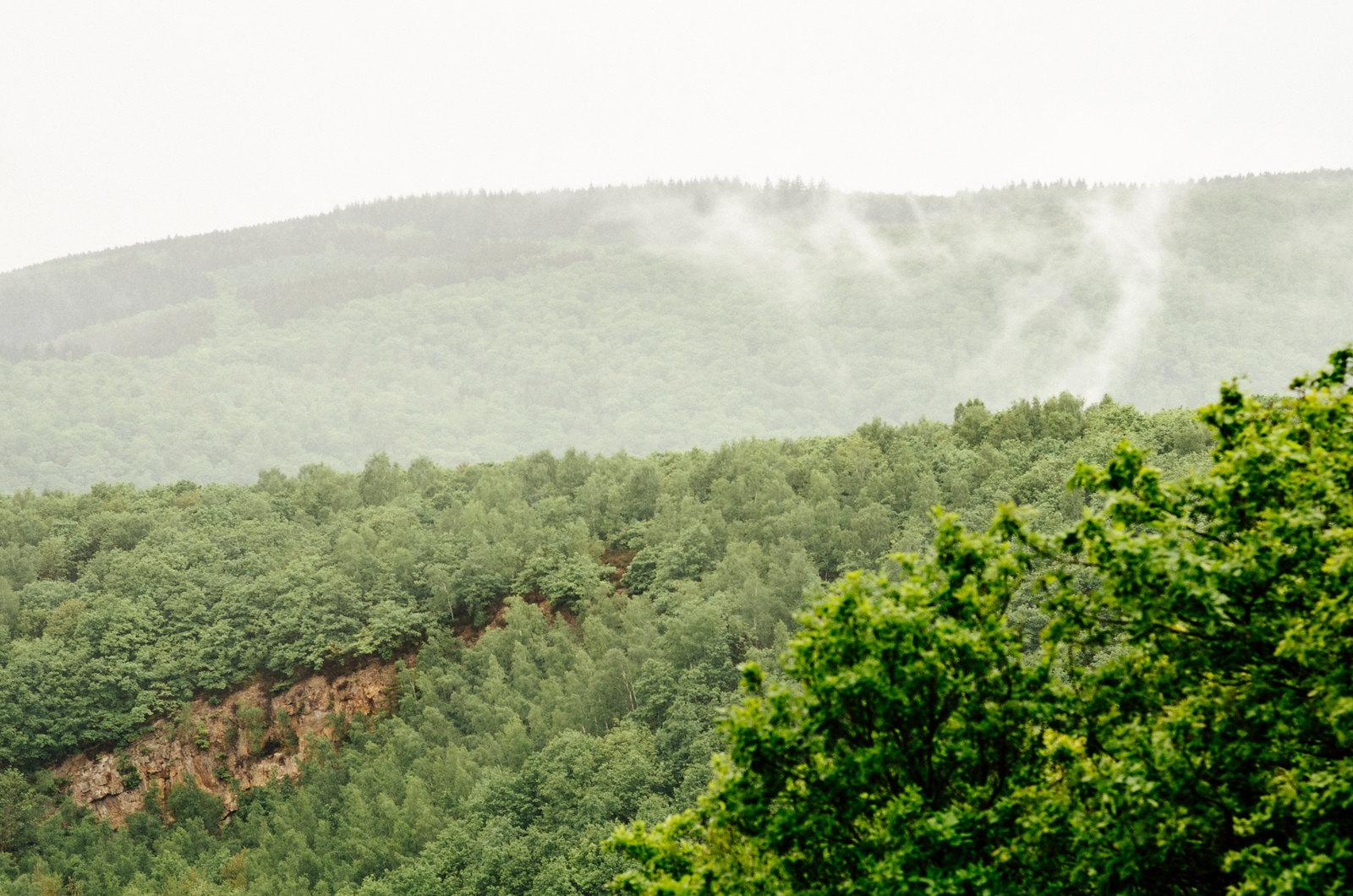 Balade dans les Ardennes - La forêt respire